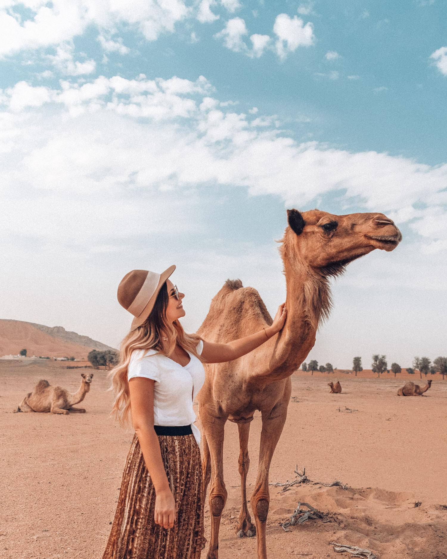 Saker at göra i Sharjah - Upplev öknen Mleiha