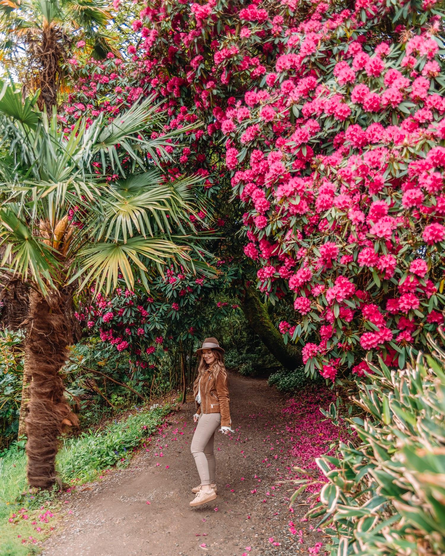 The Lost Gardens of Heligan   Vacker plats i Cornwall, England