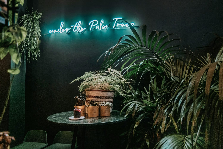 Restaurang l'Épicerie du Cirque under the palm trees i Antwerpen, Belgien