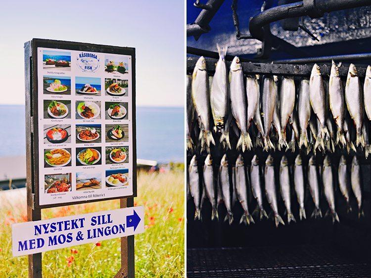 kaseberga_fiskeri