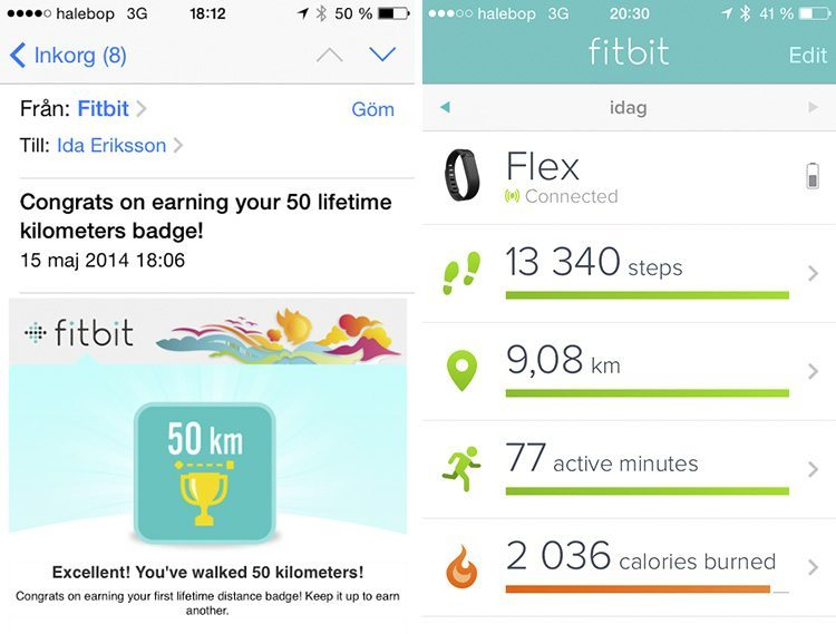 Fitbit_Flex-test