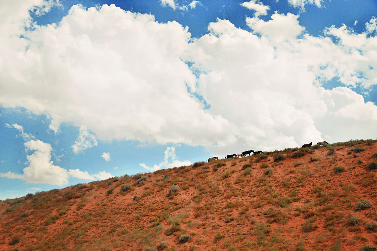 Lake Powell Navajo Tribal Park