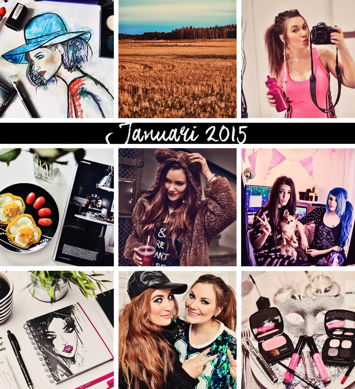 Årsresumé - Januari 2015