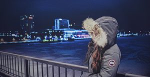 Canada Goose i Umeå