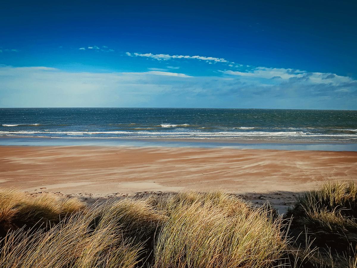 Nature in Northumberland