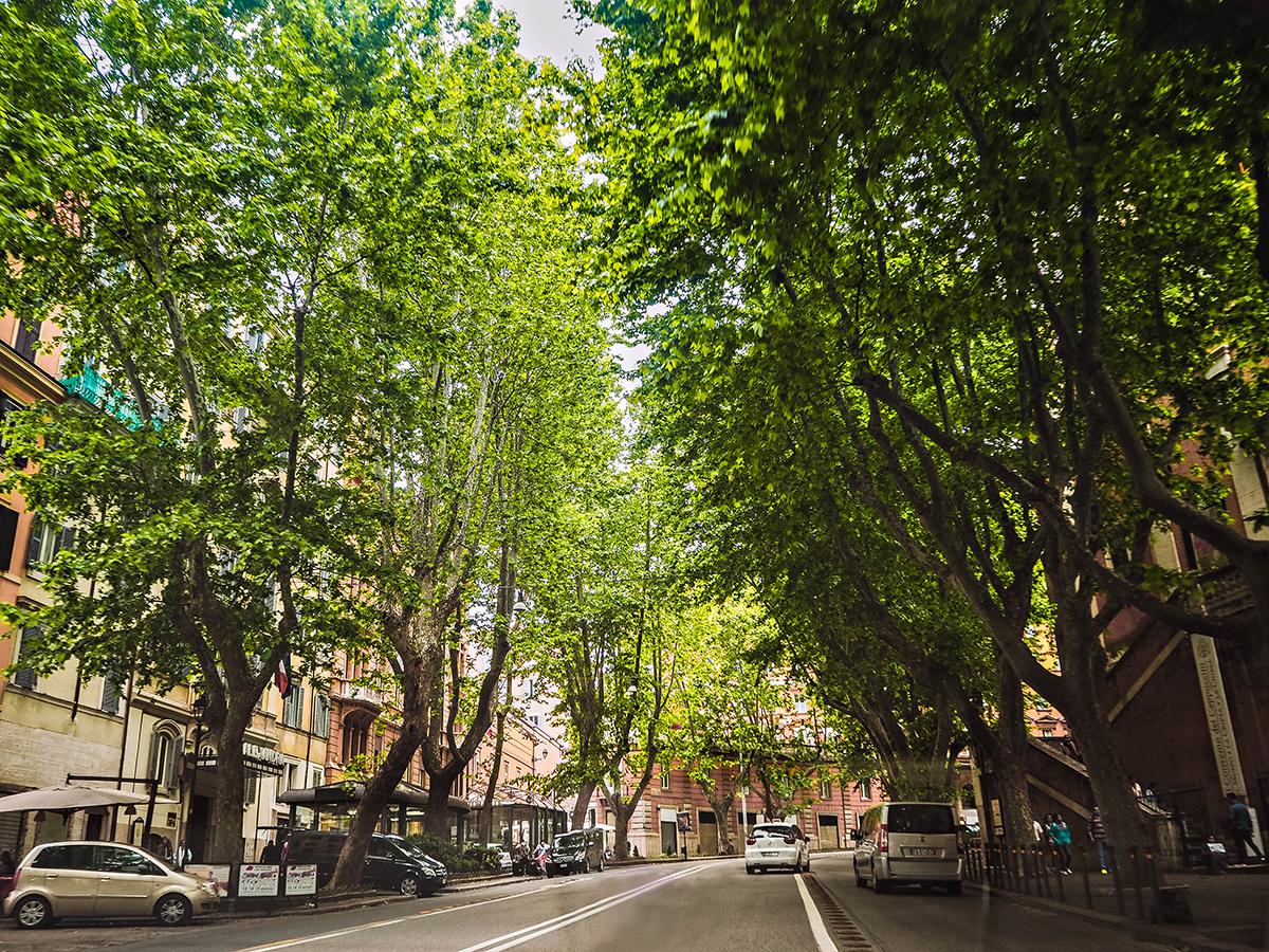 Green street in Rome