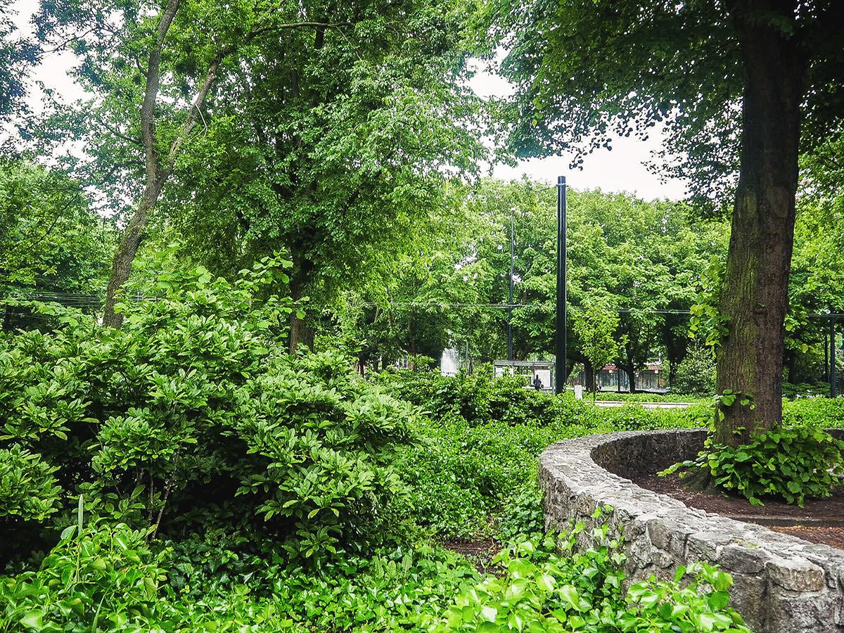 Green park in Amsterdam