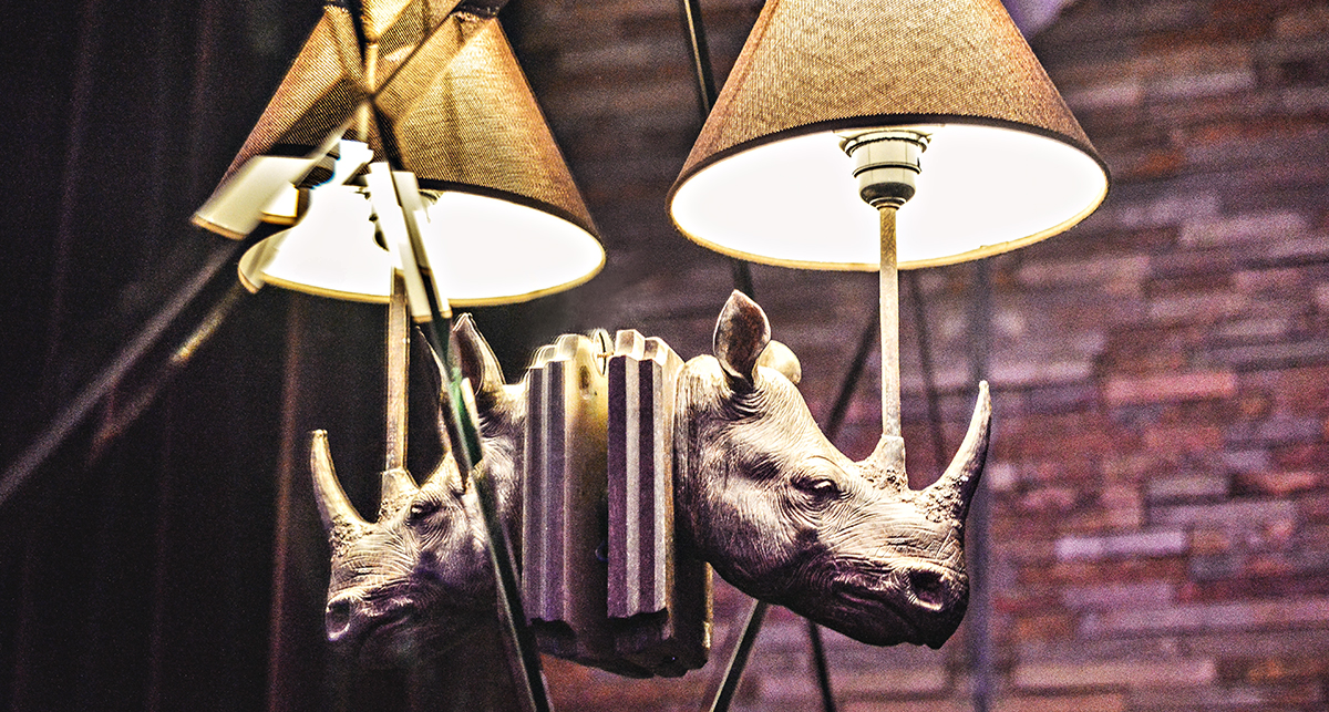 Cool rhino lamp