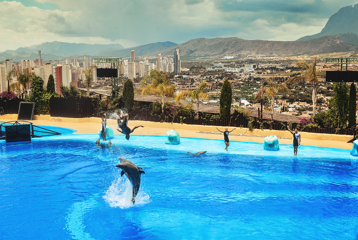 Dolphine show at Mundomar