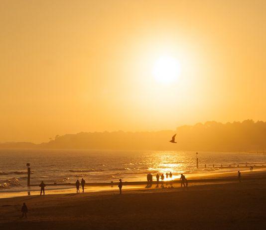 6 produkter du borde ha i solen