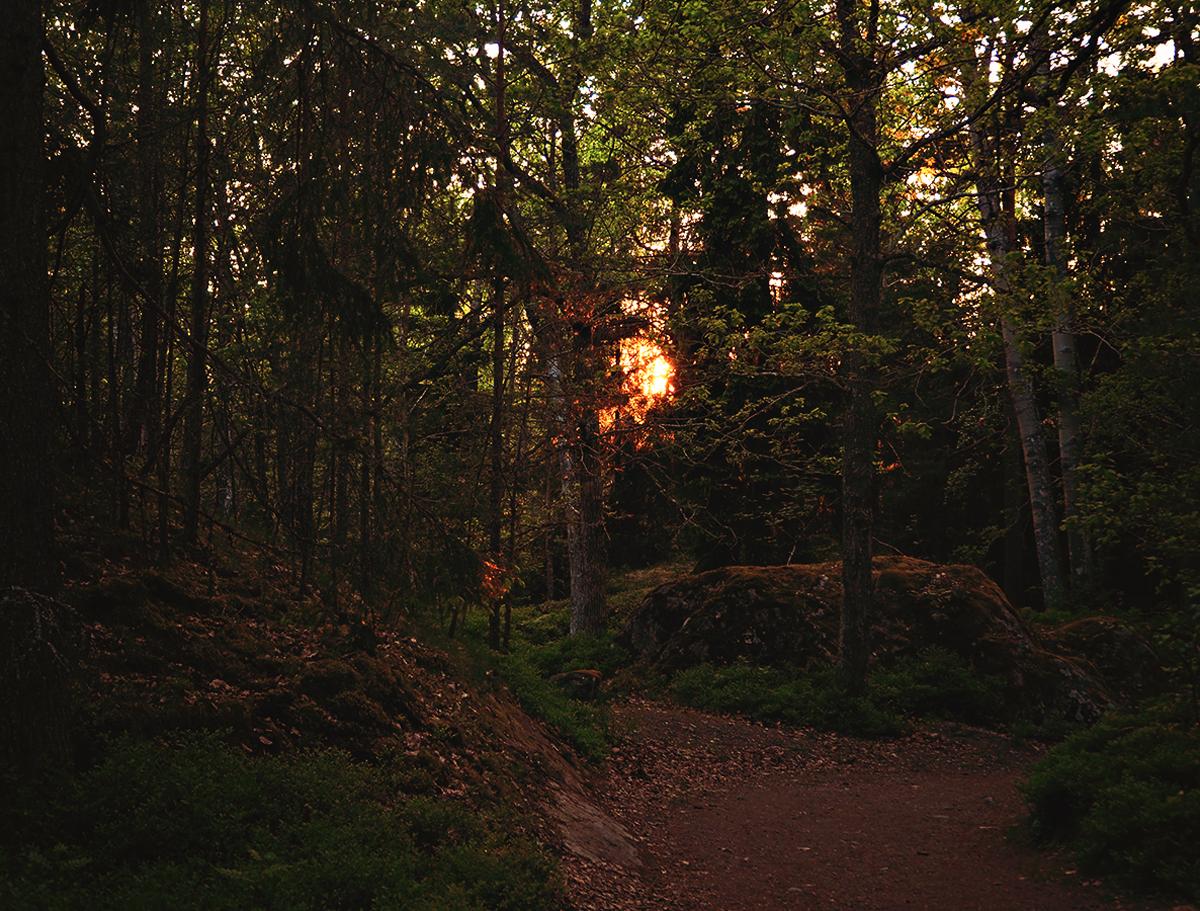 Solnedgång i Nynäshamn