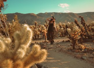California outfit in Joshua Tree National Park