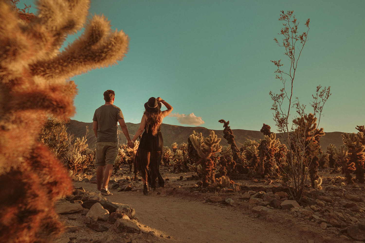 Couple Holing Hands in Joshua Tree National Park