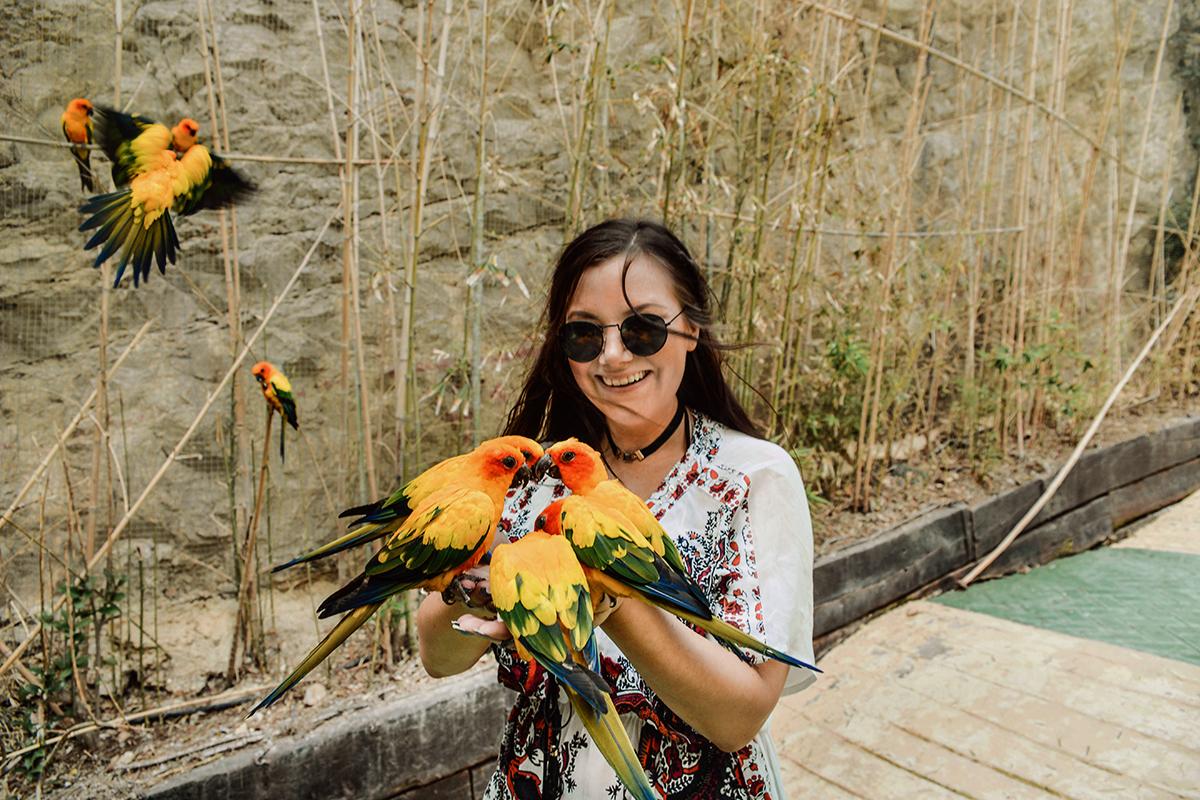 Mundomar Exotic Birds Encounter