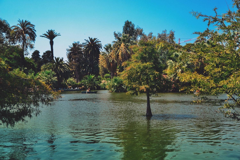 Green lake in Parc de la Ciutadella in Barcelona