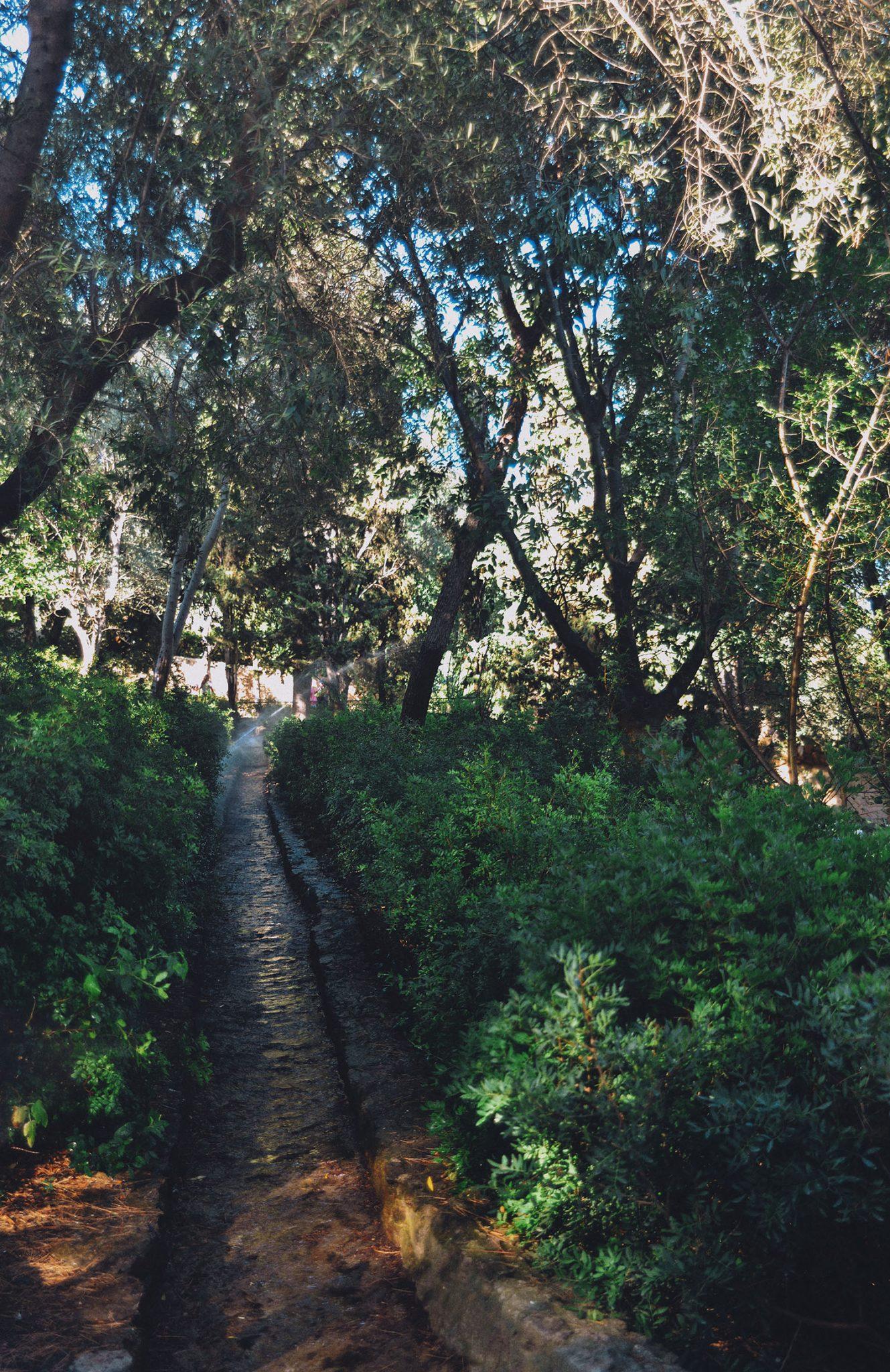 Path in Park Güell in Barcelona