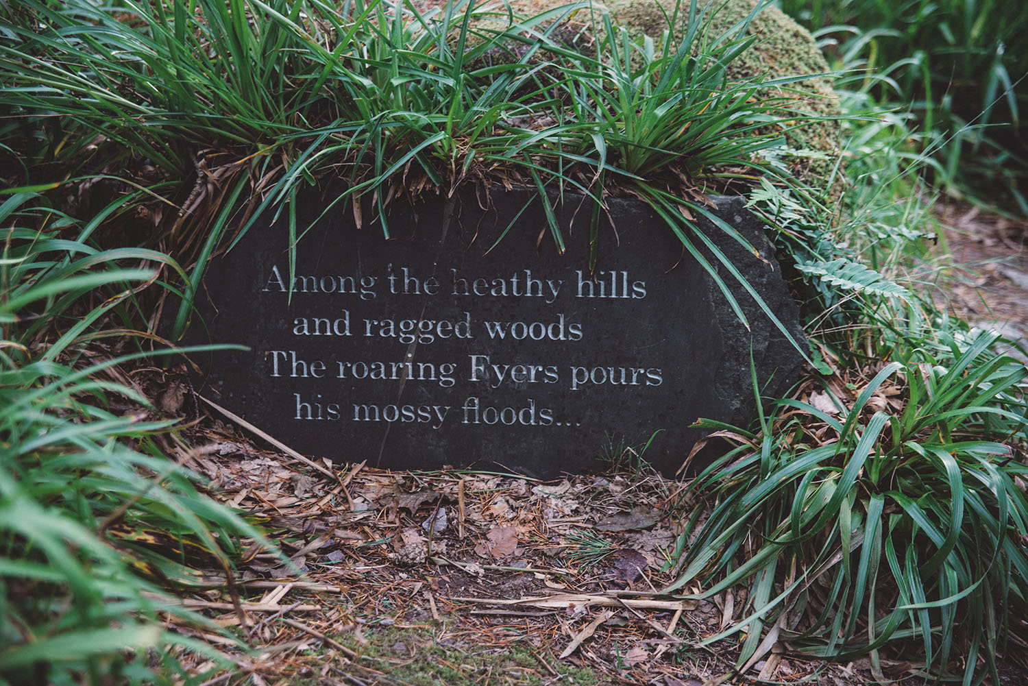 """""""Among the heathy hills and ragged woods, The roaring Fyers pours his mossy floods ..."""""""