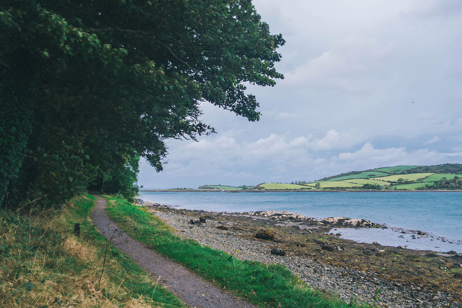 Castle Ward Strangford Lough