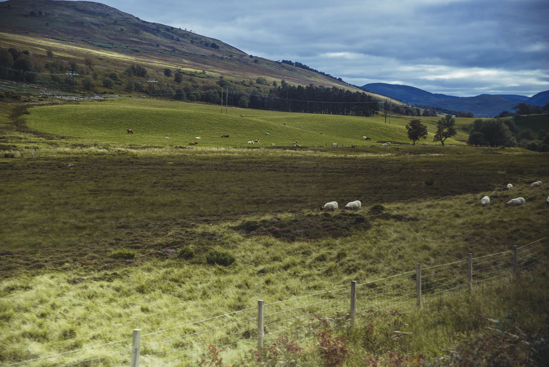 Beautiful scenery of the Scottish Highlands