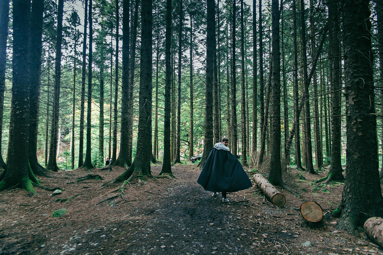 Tollymore Forest Park - Game of Thrones The Haunted Forest