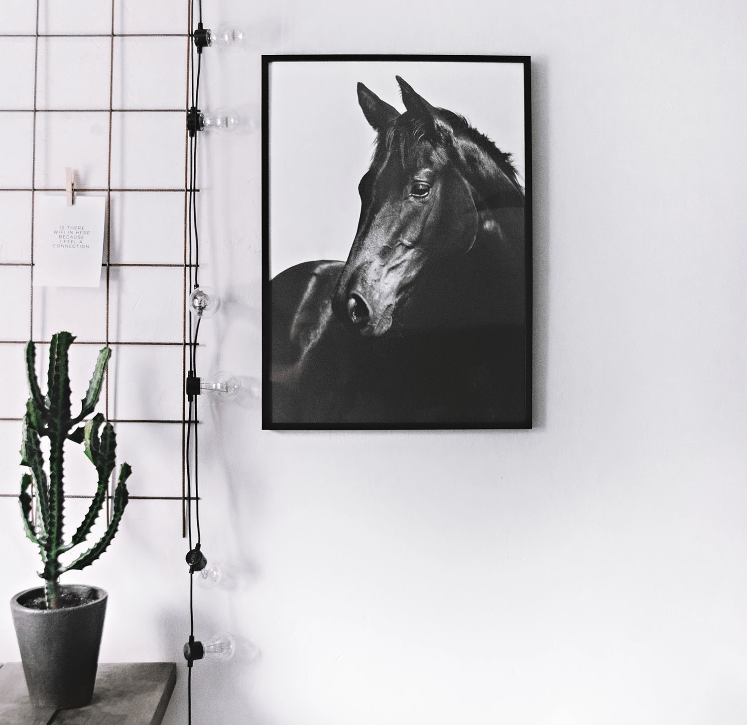 Black and white horse poster från Desenio