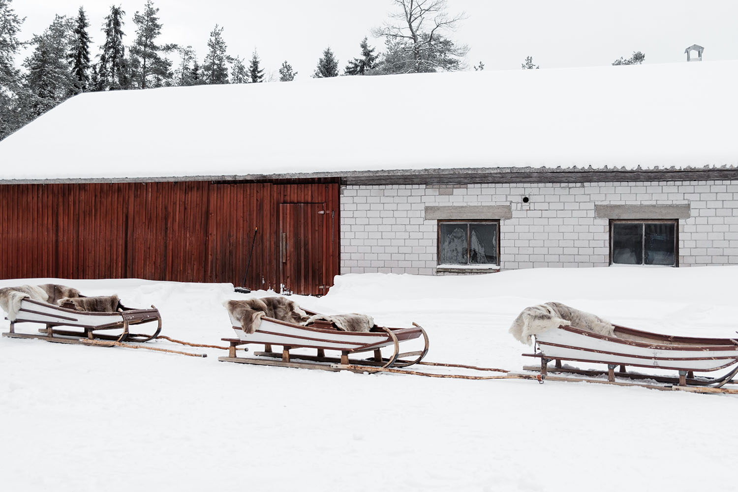 Sleds at Poro-Panuma Reindeer Farm in Finland