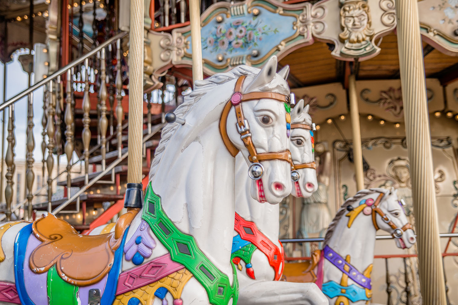 Close-up photo of Carousel Horse