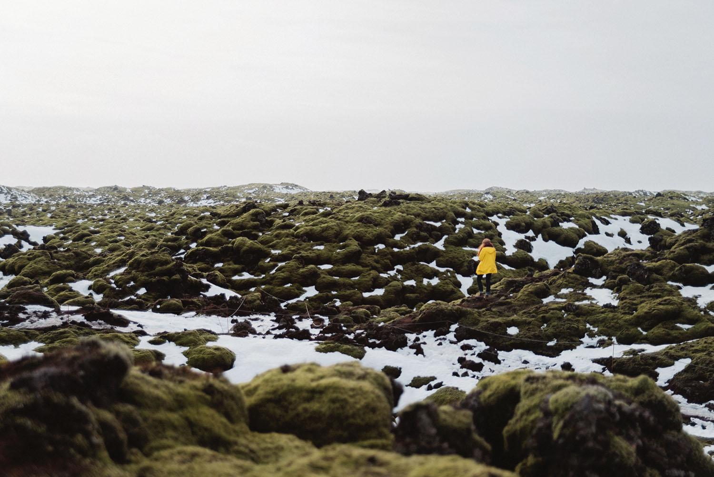 Nature on Iceland