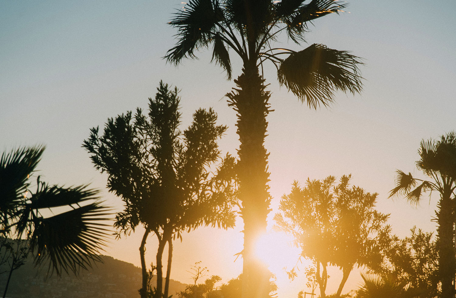 Palm trees against sunset in Alanya, Turkey
