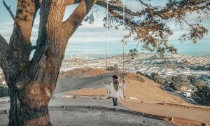 Bernal Heights: Instagram-Worthy Spots in San Francisco