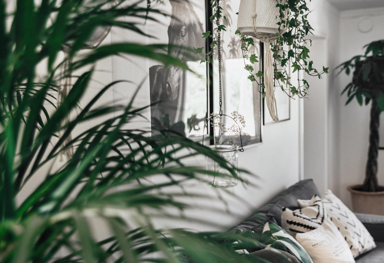 Skandinavisk inredning med växter