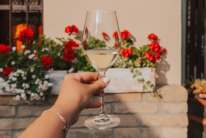 Kroatiskt vin