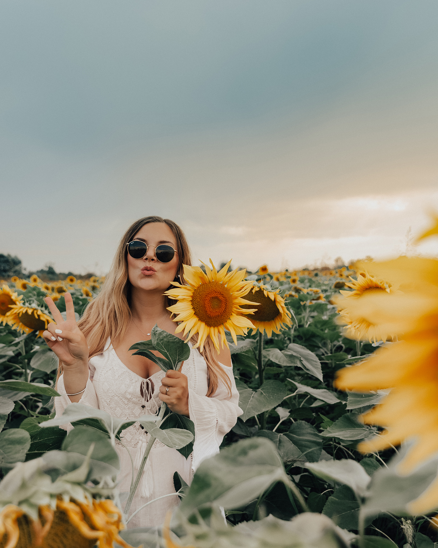 Things to Do in Slavonia, Croatia | Take Photos in Sunflower Fields