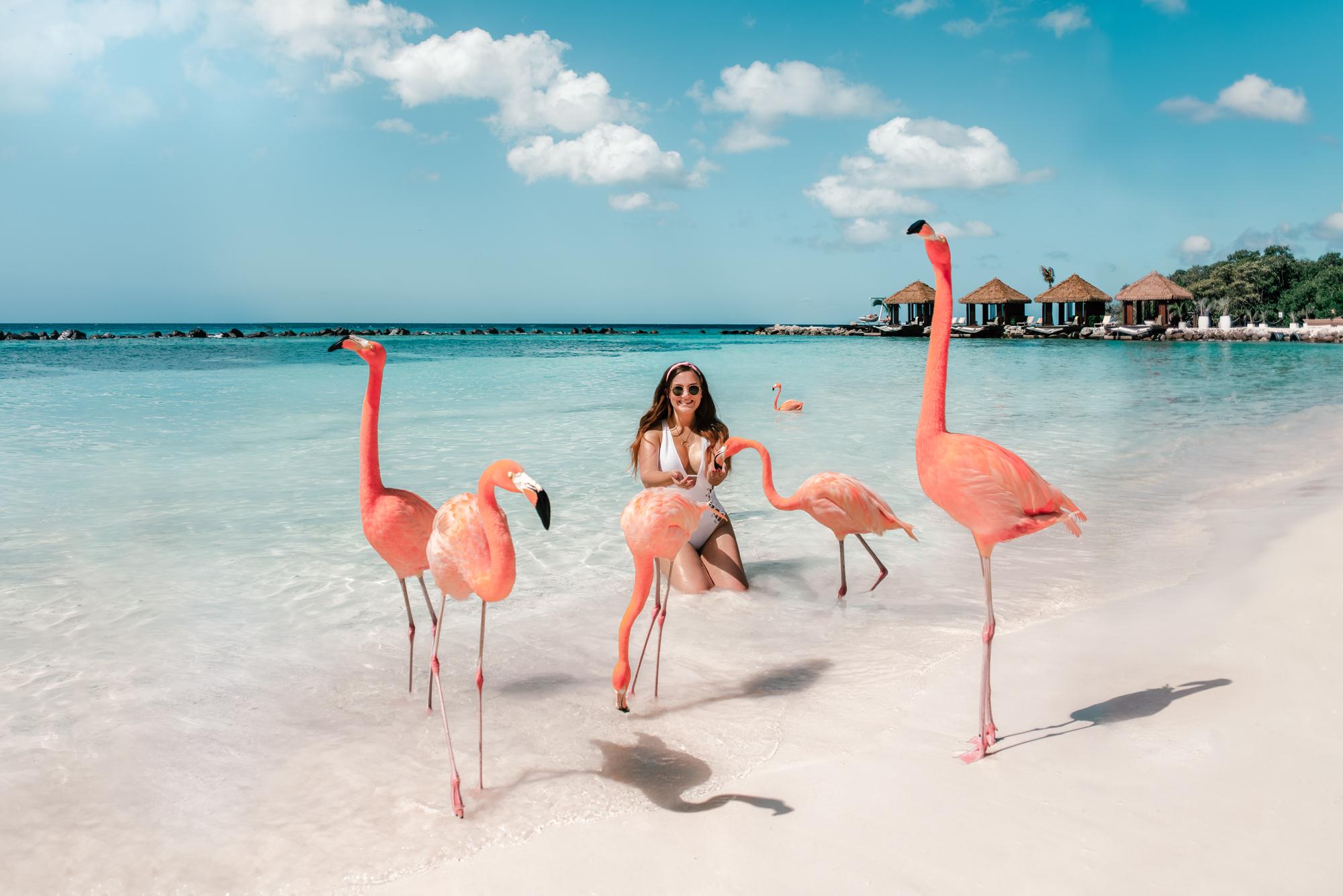 ADARAS Reseguide till Aruba, Västindien