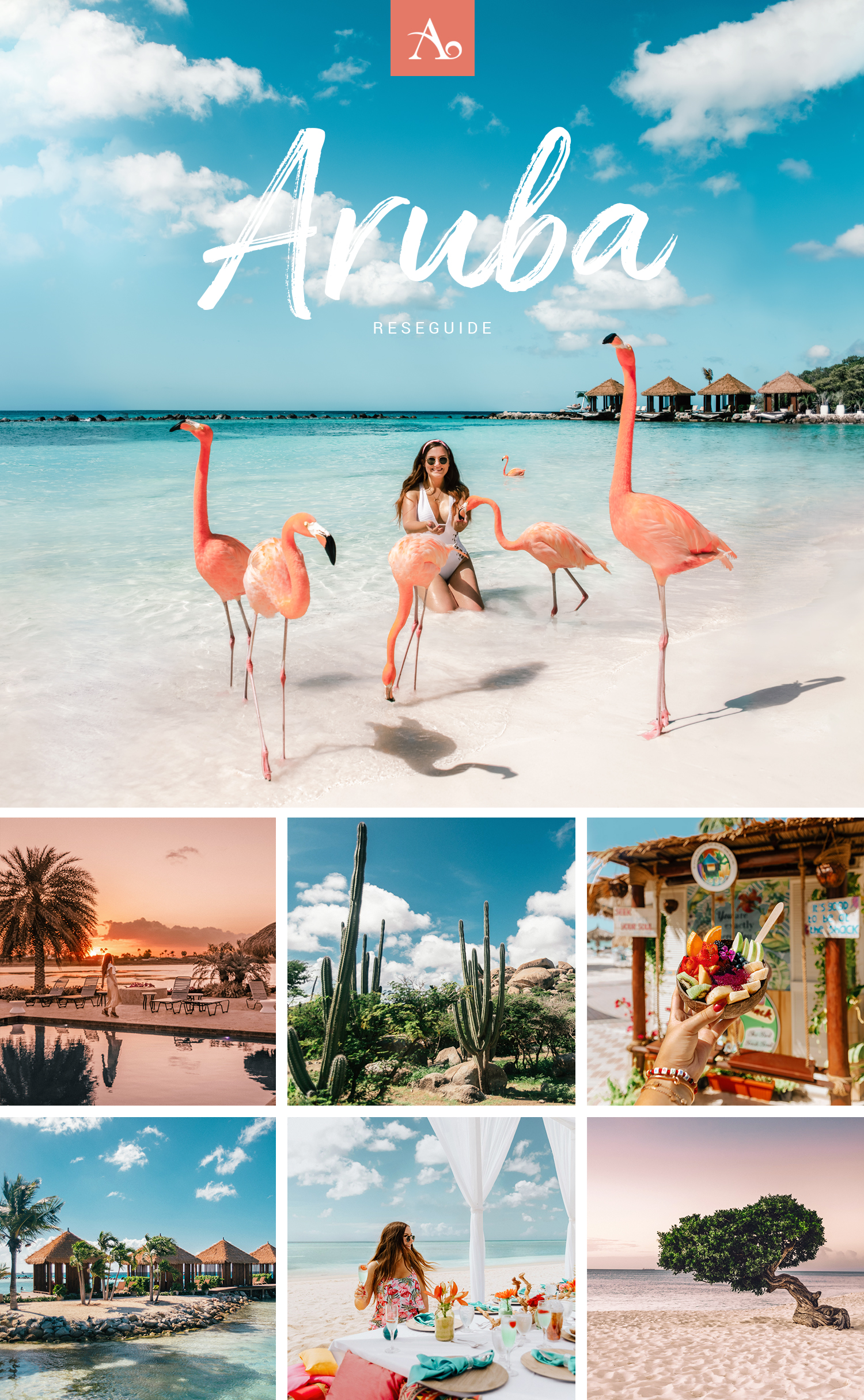 Reseguide till Aruba - Bästa tipsen till karibiska paradisön