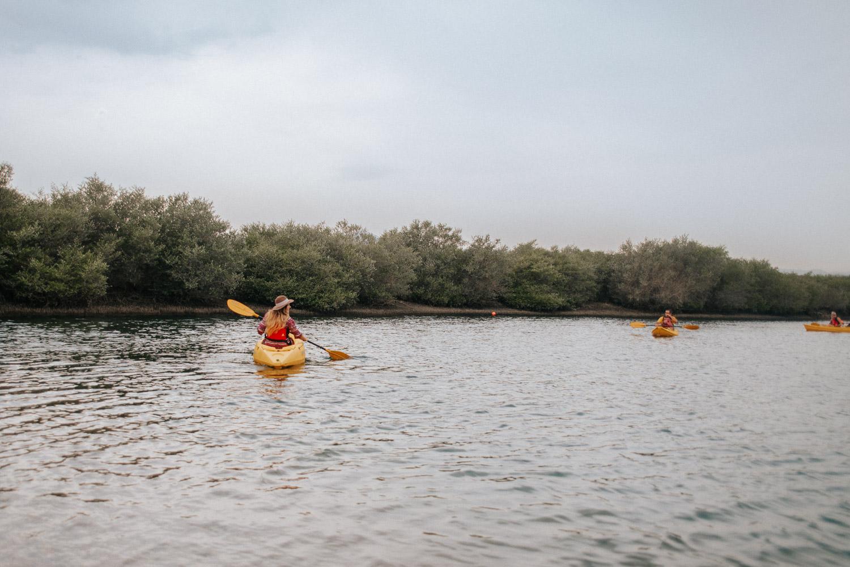 Paddla kajak bland Arabiens äldsta mangroveskog | Saker att göra i Sharjah, UAE