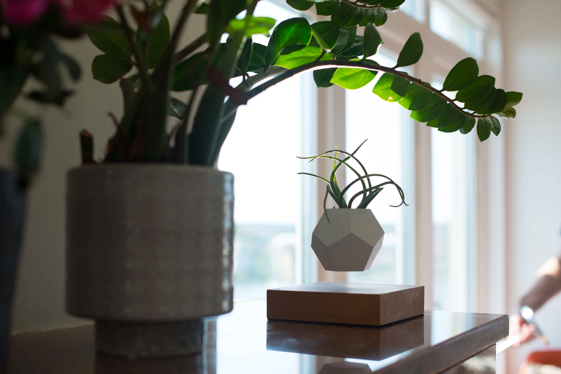 Lyfe Planter by Flyte