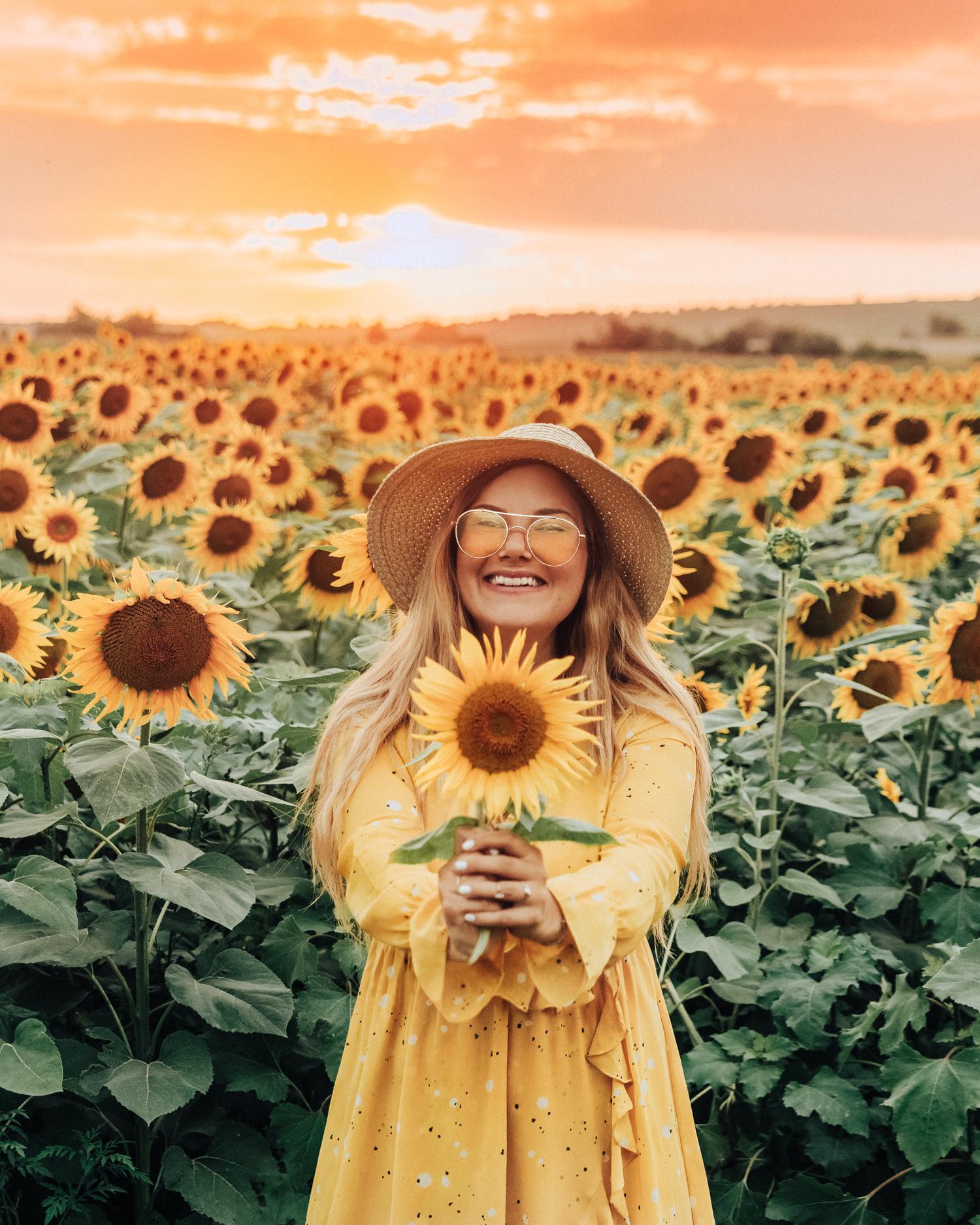Outfit med solgul klänning |Solrosfält i Slavonien, Kroatien