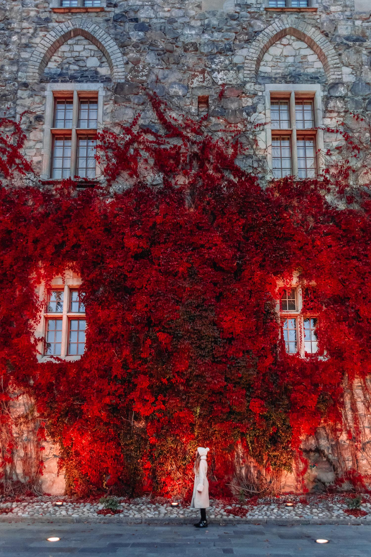 Ida Josefin Eriksson i vit kappa och mössa utanför Örebro slott vars fasad är täckt röda klätterväxter