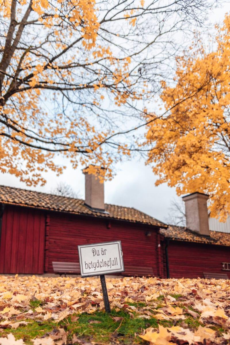 """Skylt """"Du är värdefull"""" syns ovanför mark täckt med gula höstlöv i Wadköping, Örebro"""